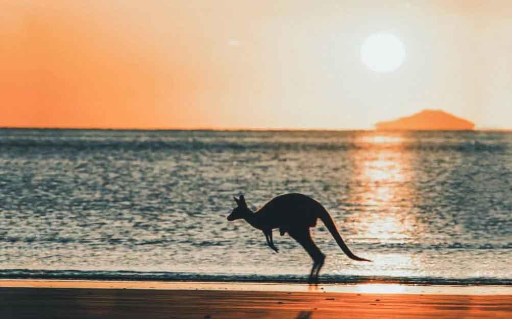 que ver australia
